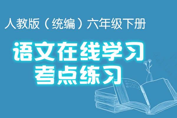 人教版(统编)六年级下册语文在线学习考点练习(共18套打包)