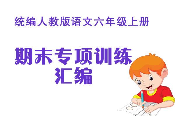 统编人教版语文六年级上册期末专项训练及答案汇编(共14套打包)