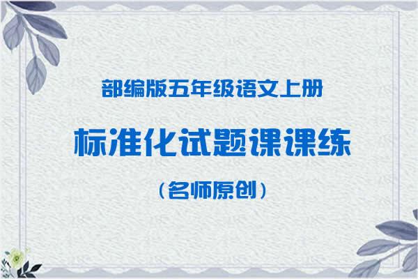 部编版五年级语文上册标准化试题课课练(名师原创)(共38套打包)