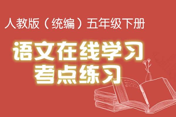 人教版(统编)五年级下册语文在线学习考点练习(共22套打包)