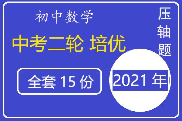 2021年中考数学二轮专题培优《压轴题》汇编(含答案)(共15套打包)