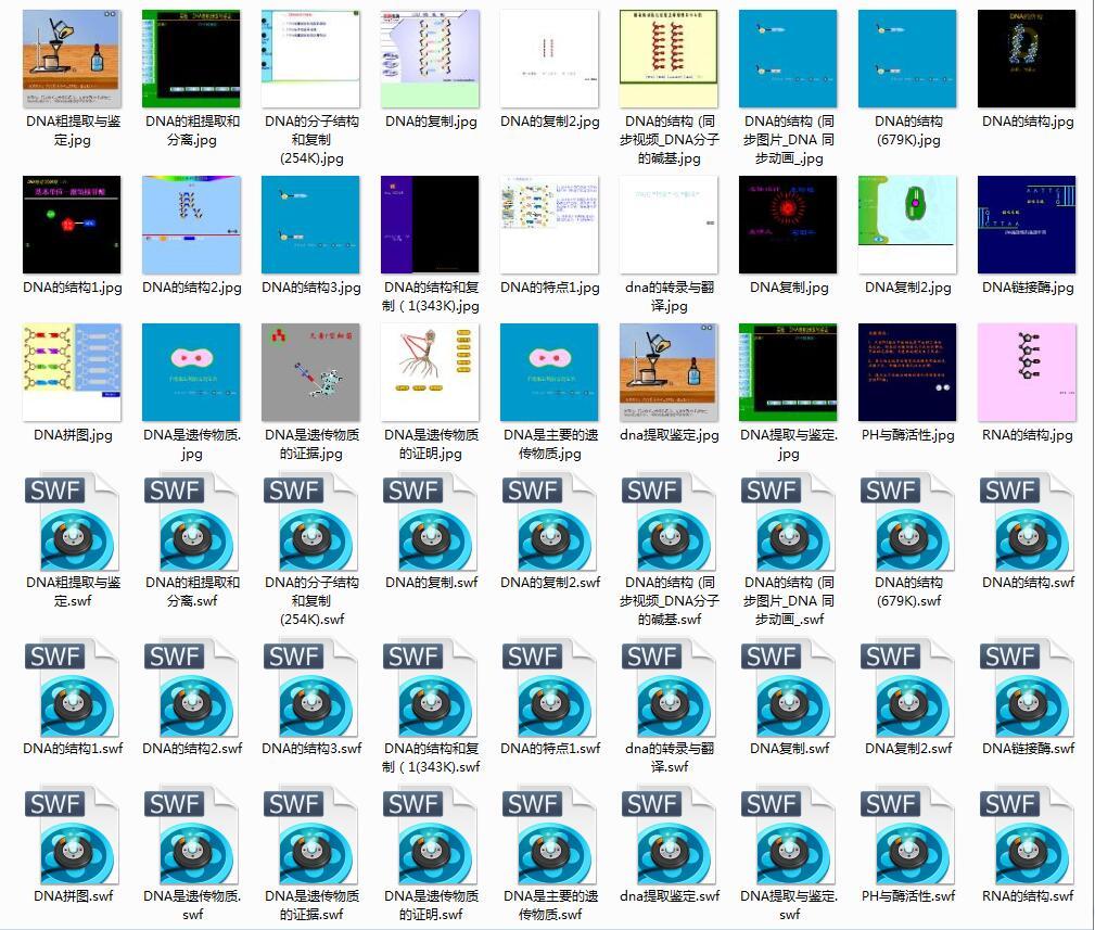 高中生物动画素材系列《DNA相关FLASH素材大全》打包(27文件).rar