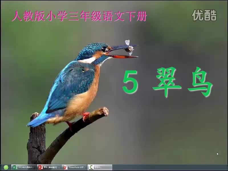 长春版语文三年级上册3-2《翠鸟》视频素材.flv