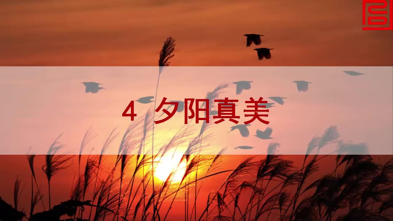 苏教版语文二年级上册第4课《夕阳真美》mp4课文朗读.mp4