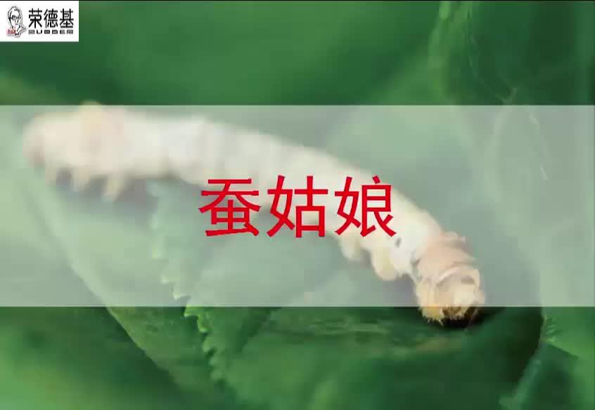 2018春苏教版语文二年级下册第2单元第2课《蚕姑娘》(课文朗读).mp4
