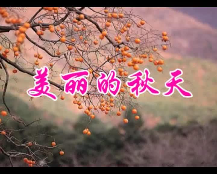山东人民版道德与法治二上《一叶落知天下秋》视频 美丽的秋天 素材.wmv