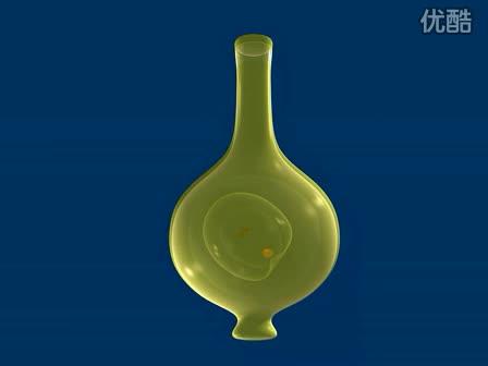 北师大版七上《植物双受精过程》视频素材.flv