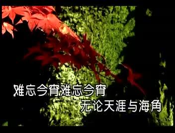 湘艺版音乐九下第七单元《难忘今宵》李谷一.mp4