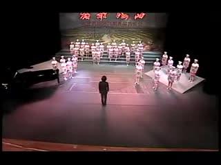 湘艺版音乐七上第五单元《槐花几时开》视频素材.flv
